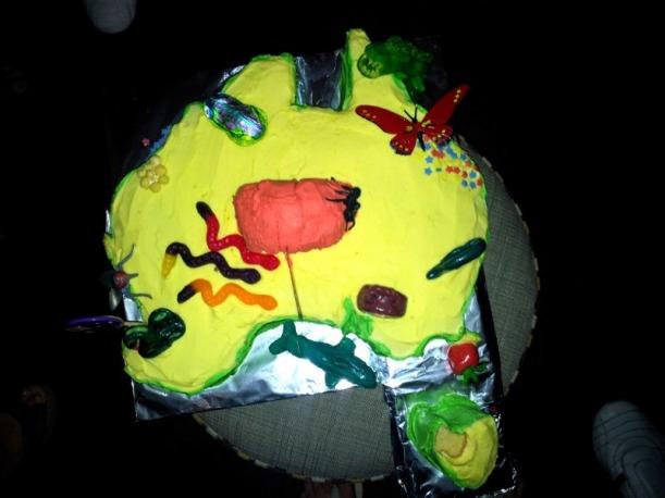 aussie farewell cake