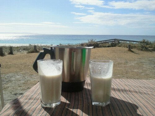 thermomix camping banana smoothie