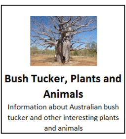 Bush Tucker, Plants and Animals
