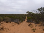 Googs Track, near Ceduna, South Australia