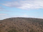 Mt Finke, Googs Track, near Ceduna, South Australia