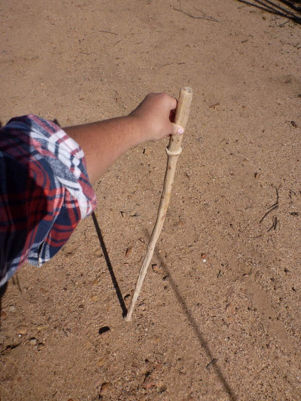 finished product hand crafted walking stick