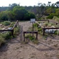 pine hill graves cape arid national park
