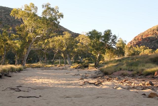 Ellery Creek dry creek bed