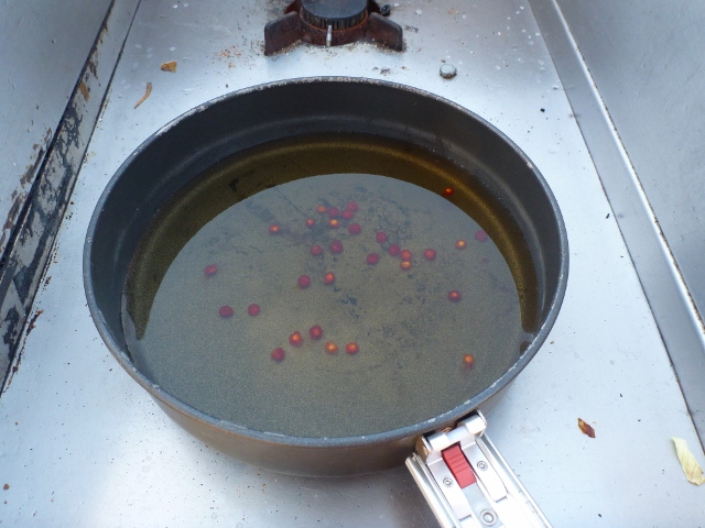 Making Ruby Saltbush tea at Ellery Creek Big Hole
