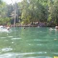 berry springs main pool