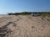 camp on dundee beach