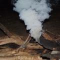smoking log on the campfire, gunlom falls camping area