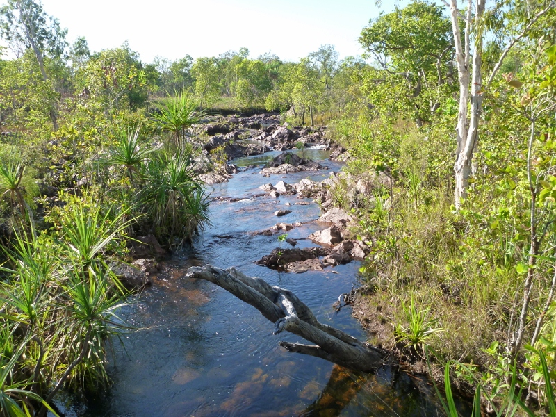 top of wangi falls, wangi creek feeding wangi falls
