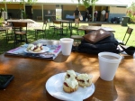 adelaide river picnic day denonshire tea