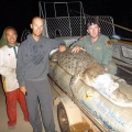 4 mile hole crocodile capture