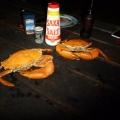 wangi cooked mud crabs