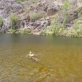 edith falls swimming