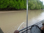 fishing for crocodiles