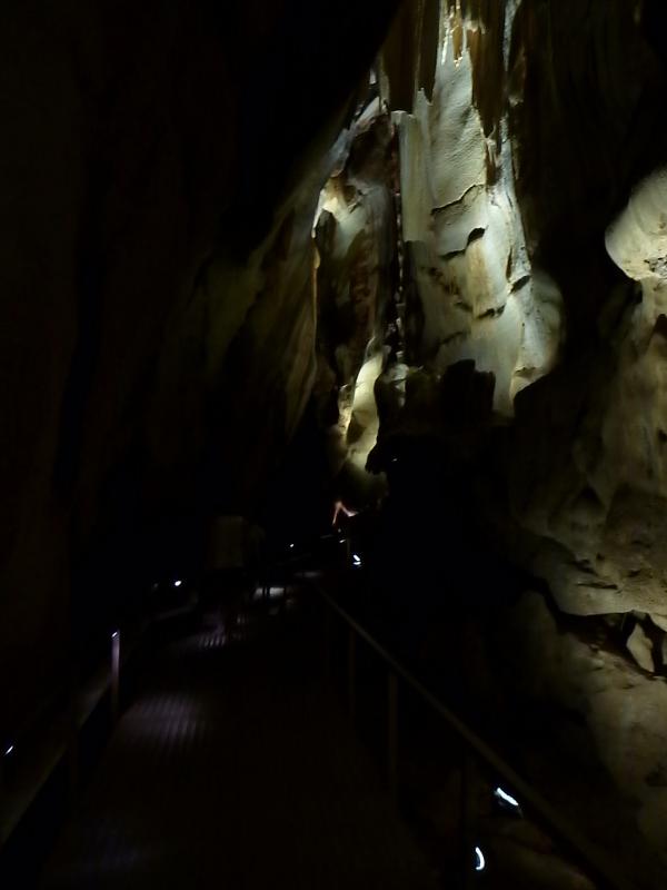 cutta cutta caves walkway