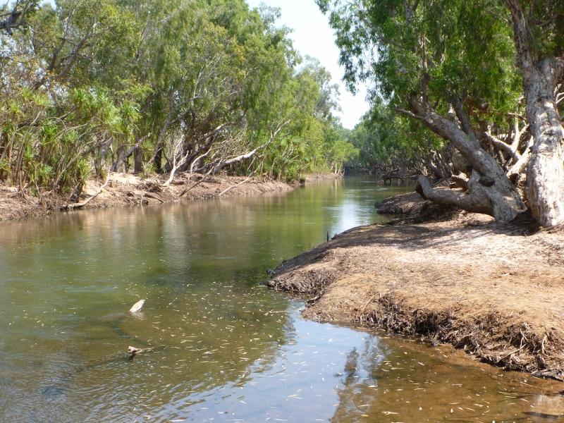 katherine river at galloping jacks