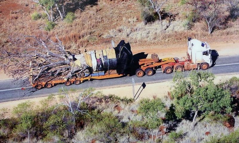 Gija Jumulu Boab Tree transported on truck
