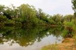 roper river near roper bar