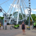 brisbane southbank ferris wheel