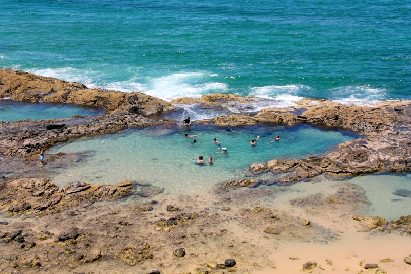 Swim Fraser Island