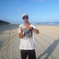 dart caught at cooloola beach