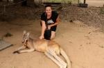 kangaroo (4)