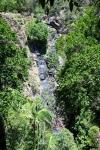 Koondalilla Falls