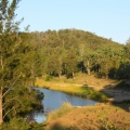 Little Yabby Creek camping area