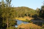 Little Yabby Creek camping area