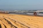 walking on cooloola beach