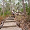 walking track to lake wabby