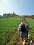 trekking through garlic fields