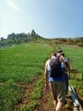 trekking through garlic fields
