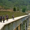 bridge in northern vietnam