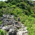 climbing up a limestone karst
