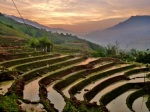 sunset over terraced paddy fields in northern vietnam