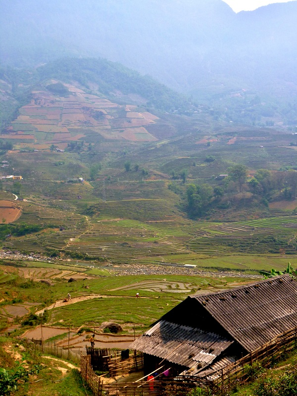 vietnam highlands near sapa