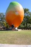 Big Mango Bowen QLD