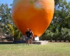 Big Mango Bowen QLD