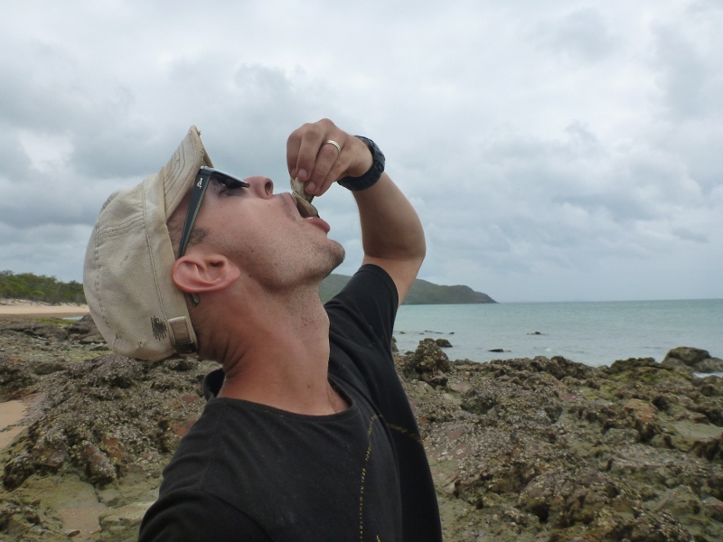 black lip oyster punsand bay