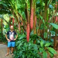 Cairns Tropical Botanical Gardens