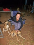 camp dogs at umagico