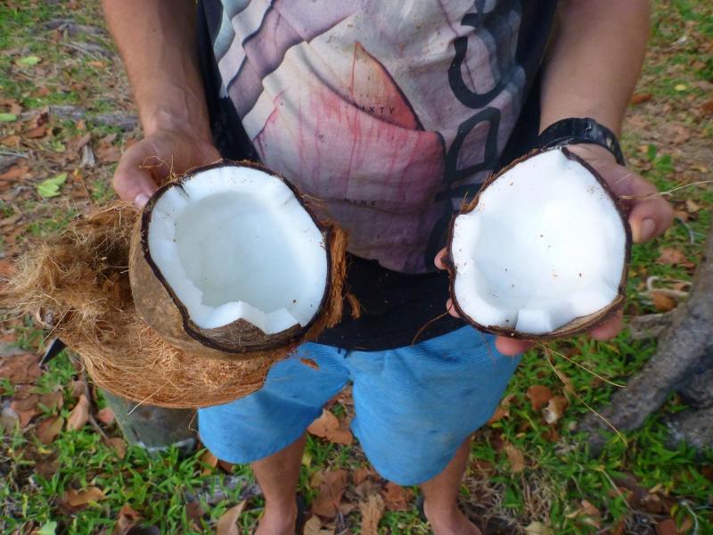 coconut at chili beach