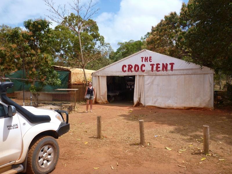 croc tent near cape york tip