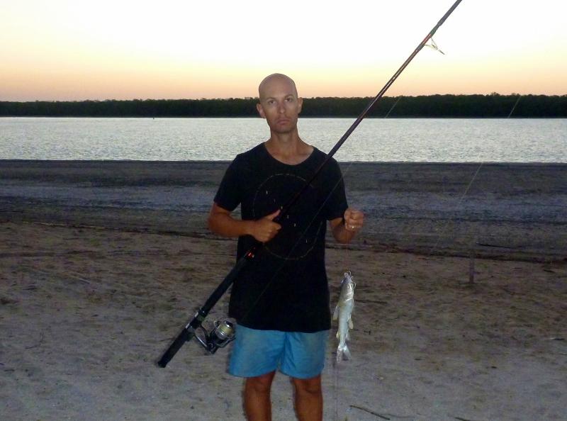 another dam catfish