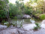 jackey jackey creek cape york