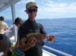 port douglas fishing charter