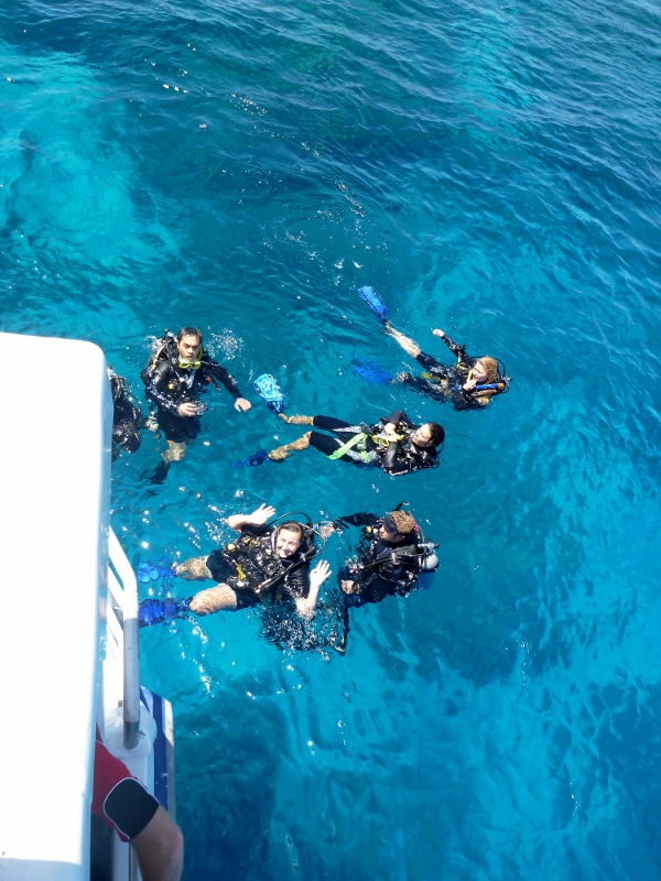 sharni diving great barrier reef