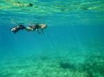 chris snorkelling