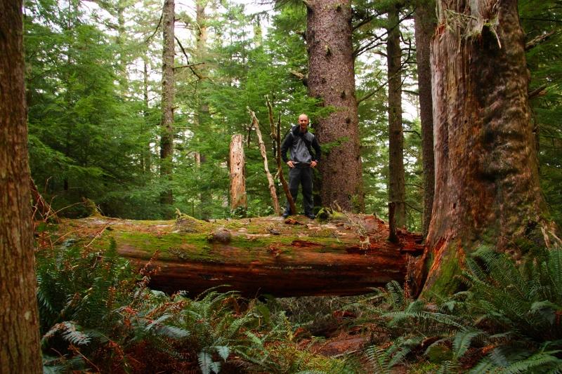 Hiking, Seaview, Central Oregon Coast
